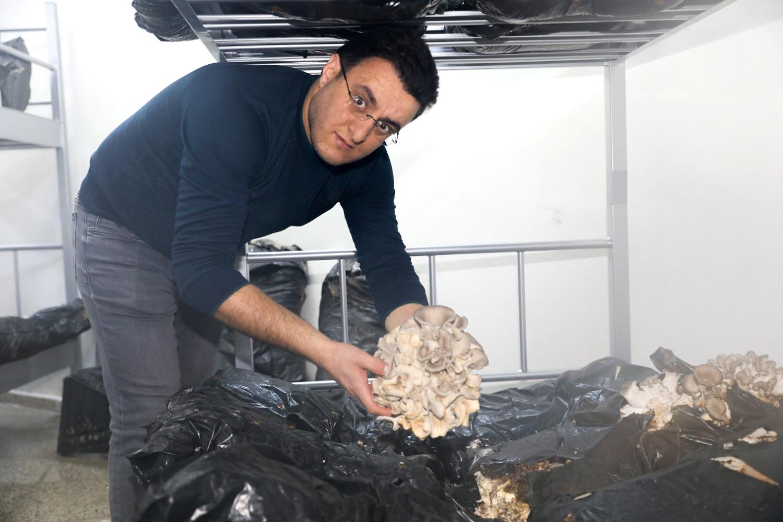 Üniversitemizde Ölümsüzlük Mantarı ve İstiridye-Kayın Mantarı Üretimine Başlandı