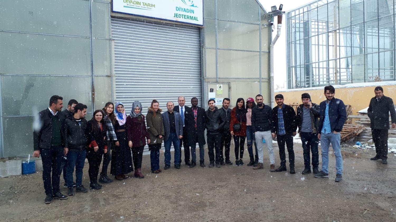 Ziraat Fakültesi Bitki Koruma Son Sınıf Öğrencileri Diyadin Jeotermal Seracılık İşletmelerine Teknik Gezi Düzenledi