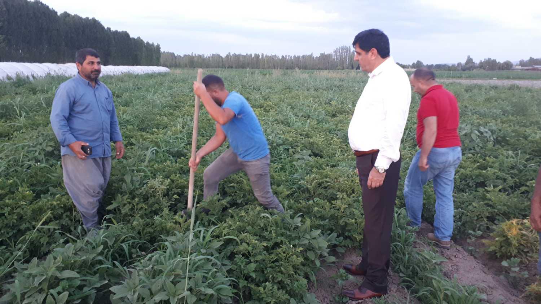 Rektör Alma Çiftçi Ziyaretlerine Devam Ediyor
