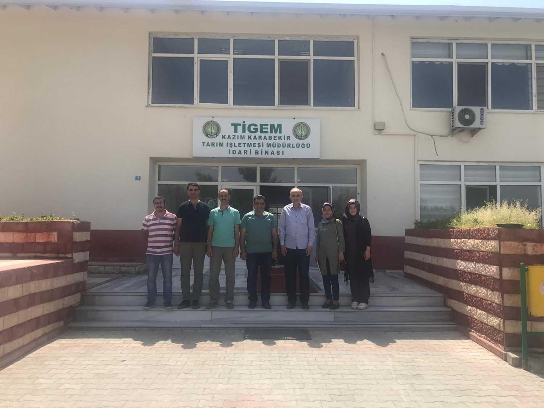 Öğretim Üyelerimizden Kazım Karabekir Tarım İşletmesi Müdürlüğüne Teknik Gezi