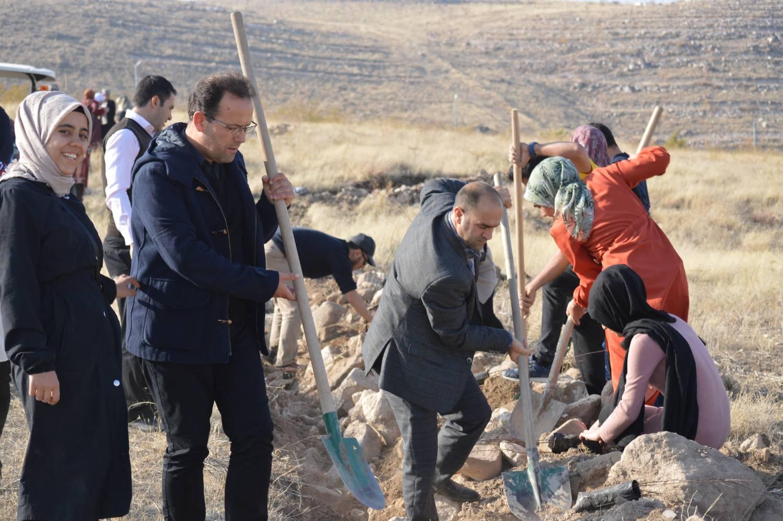 Üniversitemiz Şehit Bülent Yurtseven Kampüsünün yeşillendirilmesi kapsamında ağaç dikme programı ilahiyat fakültesi tarafından başarılı bir şekilde düzenlendi.