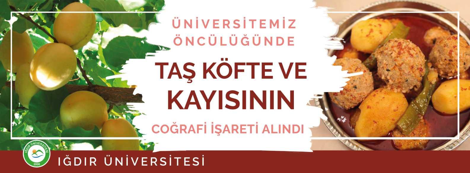 11-06-2019-tas-kofte-ve-kayisi-banner.jpg