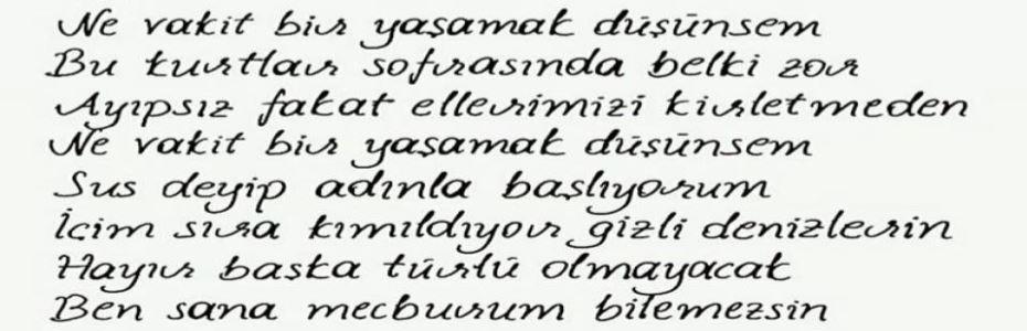 Türk Dili ve Edebiyat 9
