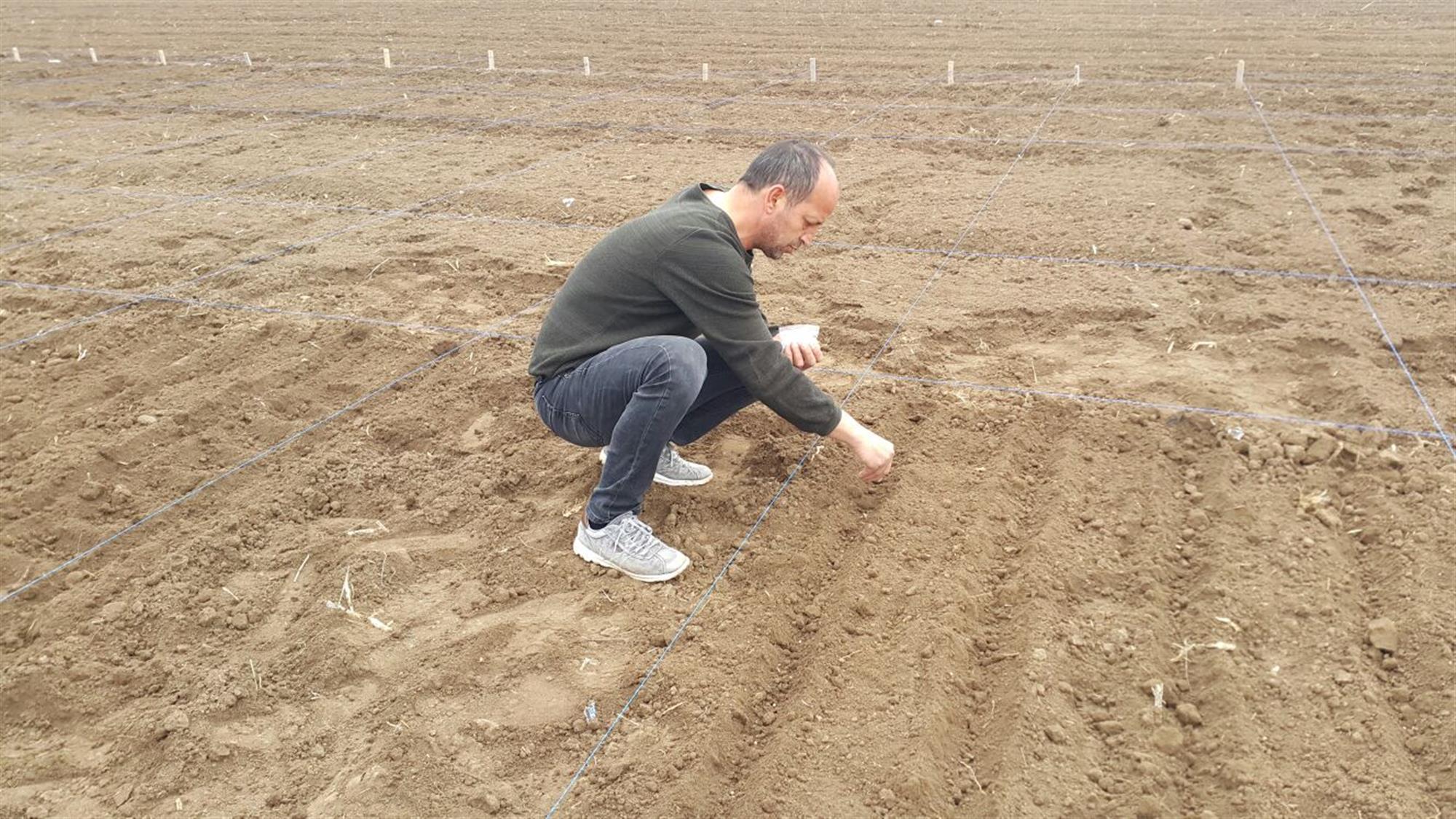 Tarımsal Uygulama ve Araştırma Merkez Sahasında Yılın İlk Ekimleri